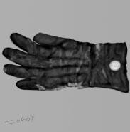 gants Halsted