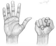 jersey finger